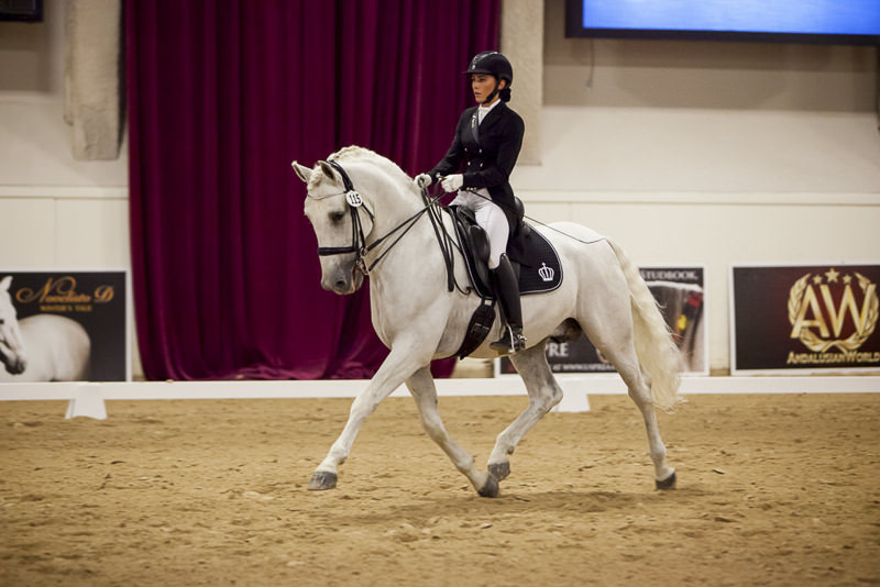Classes | Andalusian World Cup